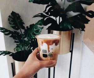 chic, espresso, and green plants image