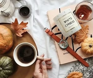 autumn, cosy, and coffee image
