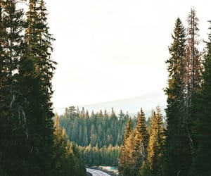 explore, road, and roadtrip image
