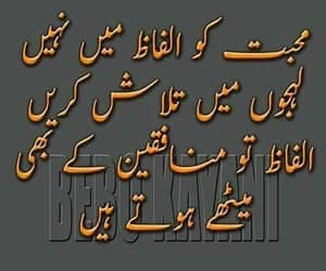 well said, urdu golden words, and harsh reality image