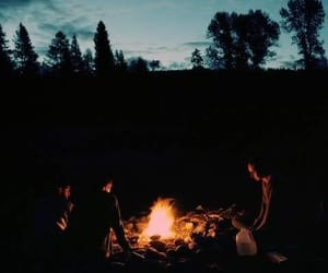 adventure, bonfire, and woods image
