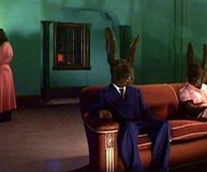 confusing, rabbits, and david lynch image