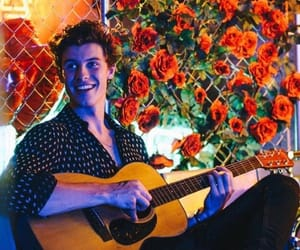 guitar, shawn, and handsome image