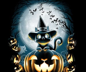cat, gato, and Halloween image