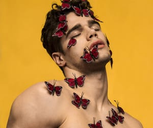 boy, guy, and butterflies image