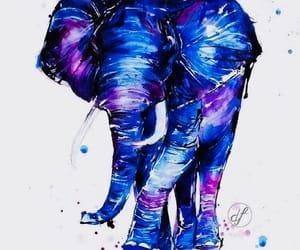 art, cool, and elephant image