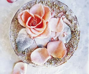flowers, petals, and sugar+ image