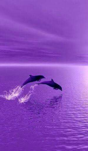 273 images about purple on we heart it see more about purple
