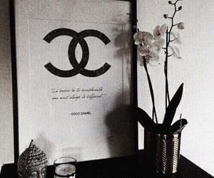 theme, chanel, and flowers image