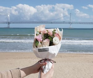 aesthetic, bouquet, and flowers image