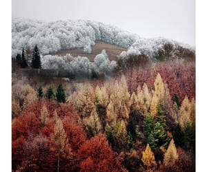 beautiful, colors, and slovakia image