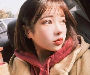article, kpop, and lisa image