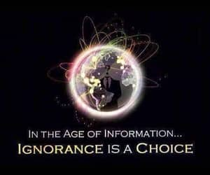 choices, ignorance, and age of information image