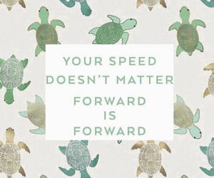 green, turtle, and quote image