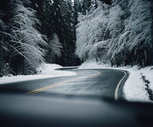winter, road, and forest image