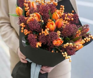 autumn, beautiful, and flowers image