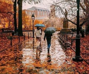 autumn, fall, and rainy day image