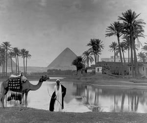egypt and giza image