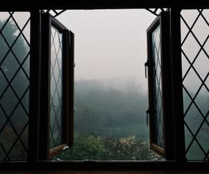 window, nature, and grunge image