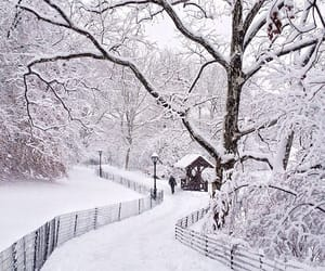 scenery, season, and snow image