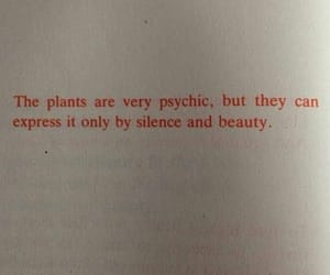 quotes, plants, and beauty image