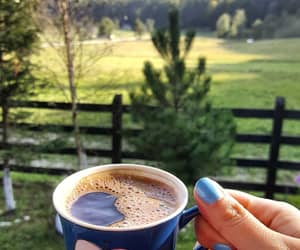 beautiful, chill, and coffe image