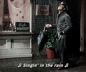 gif, movie, and rain image