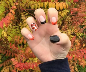 autumn, black nails, and pumpkins image