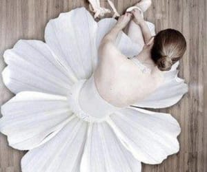 ballet, flowers, and ballerina image