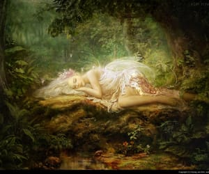 fairy, forest, and art image