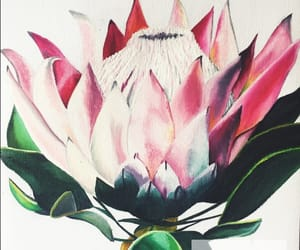 art, earthy, and flower image