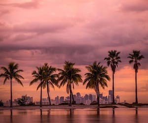 dreams, happiness, and Miami image