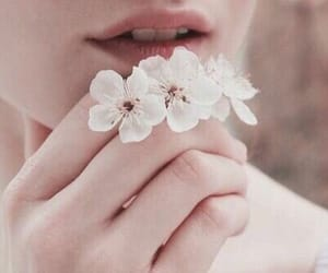 blossoms, flowers, and breath image