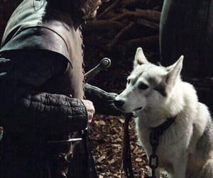game of thrones, lady, and ned stark image