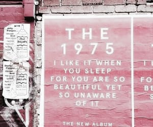 pink, theme, and the 1975 image