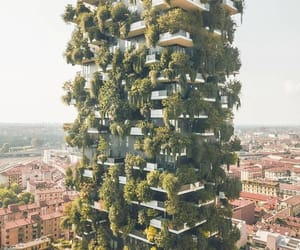 building, organic, and earthly paradise image