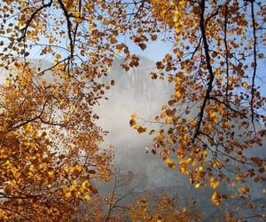 autumn colors, clouds, and fog image