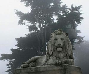 lion, fog, and statue image