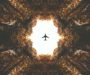 plane, travel, and tree image