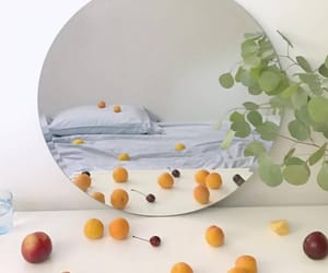fruit, mirror, and plants image
