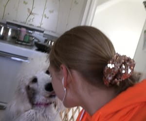 kisses, poodle, and puppy image