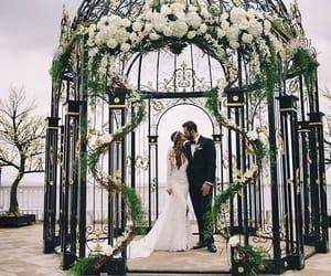 bride, cage, and decor image