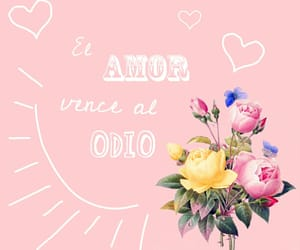 amor, flores, and rosa image