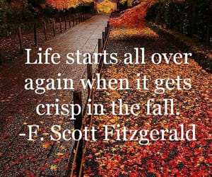 fall, quotes, and autumn image