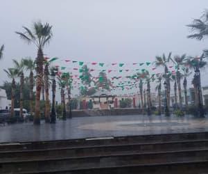 california, santos, and lluvia image