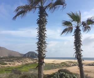 beach, paisaje, and santos image