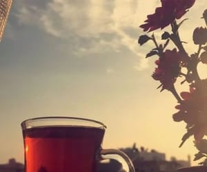 bonjour, tea, and تاي image
