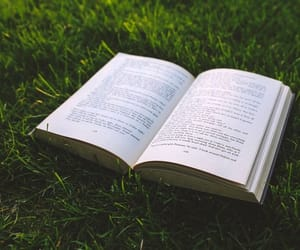 book, grass, and green image