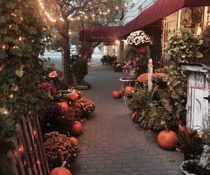autumn, fall, and Halloween kép