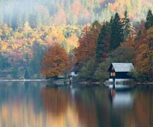 lake, nature, and autumn image